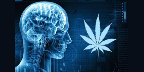 Get to Know the Key Effects of Marijuana on Mental Health