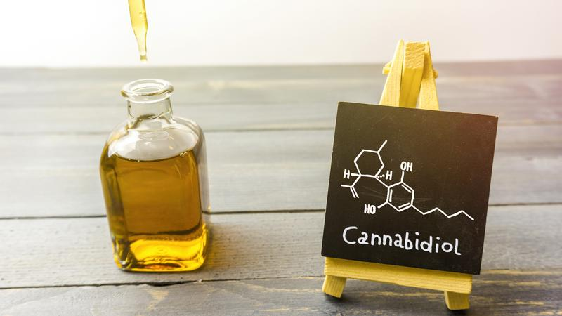 Terpenes and cannabinoids are derived from the hemp of the CBD oil