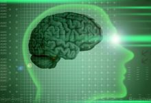 Increase the neurogenesis in your body as the anandamide is useful for the adults