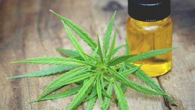 Cannabinoids and CBD Oil