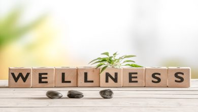 wellness & holistic medicine clinic