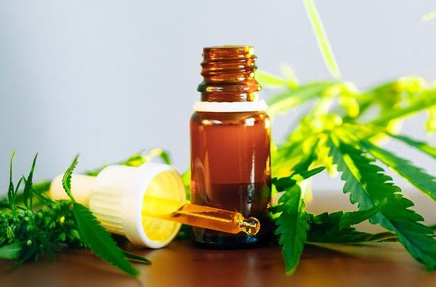 Benefits of Cannabidiol Oil – Cure the Mental and Physical Issues